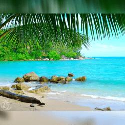 🏝️ Beaches